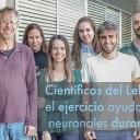 Científicos del Leloir demuestran que el ejercicio ayuda a reforzar circuitos neuronales durante el envejecimiento