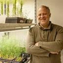 Gen descripto por científicos del Instituto Leloir podría aumentar la productividad de la papa, del tomate y de otros cultivos