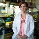 María Soledad Treffinger, doctoranda del Leloir que estudia la biología y bioquímica del parásito del Chagas