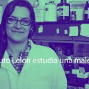 Científica del Instituto Leloir estudia una maleza que infesta cultivos de arroz