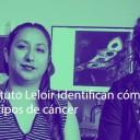 Científicos del Instituto Leloir identifican cómo se relacionan las mutaciones en 47 tipos de cáncer