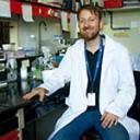 Buscan desarrollar una prueba en sangre que sirva para determinar fallas en el metabolismo energético asociado a la enfermedad de Alzheimer