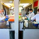 Vacuna experimental de la FIL contra COVID-19 recibe importante financiamiento