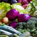 El Instituto Leloir en el Día Mundial de la Alimentación