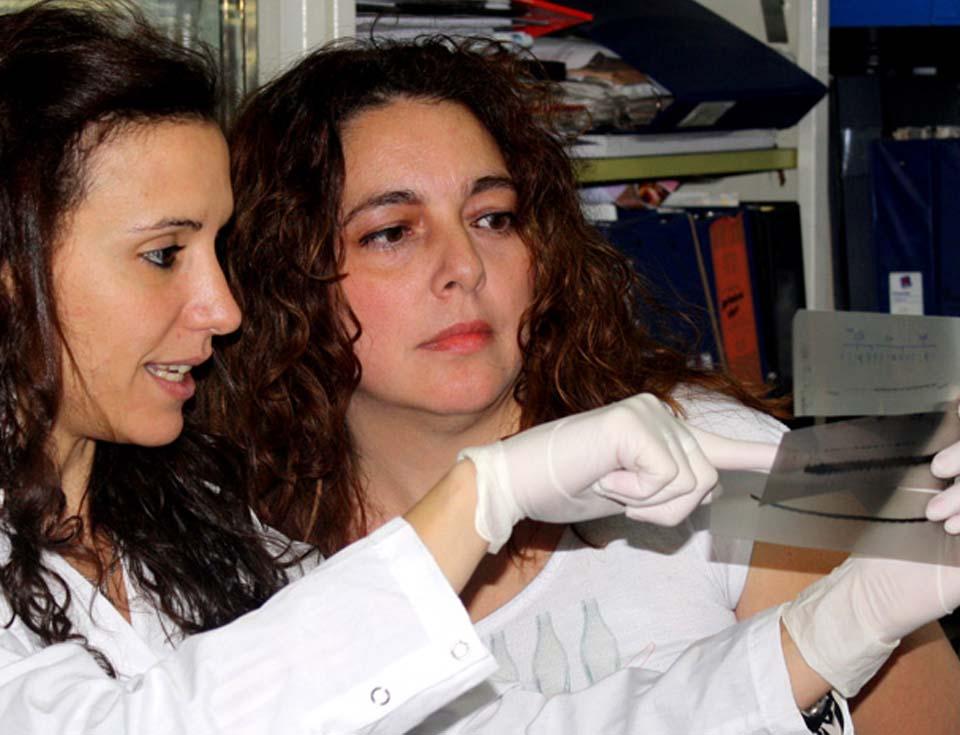 Juliana Speroni, primera autora del estudio, y Vanesa Gottifredi, jefa del laboratorio de Ciclo Celular y Estabilidad Genómica de la Fundación Instituto Leloir.