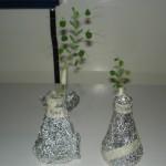 Plantas inoculada y cultivadas en luz y la de la derecha con bacterias cultivadas