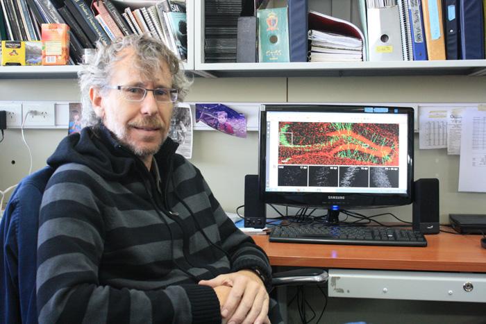 Dr. Alejandro Schinder