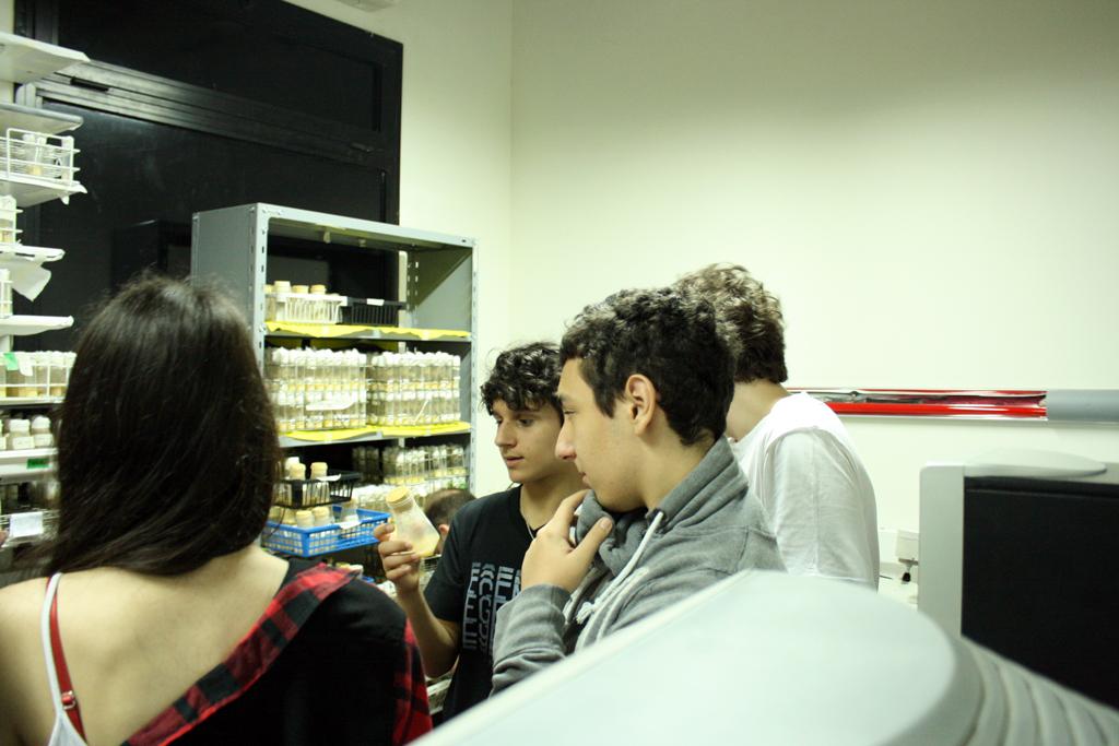 Los estudiantes en el Fly Room