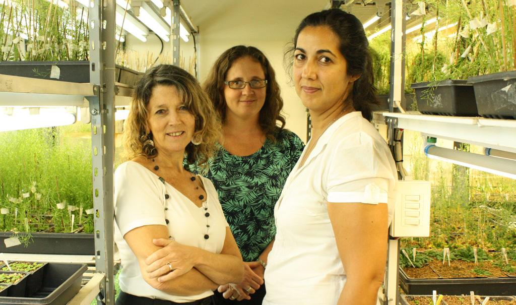 Angeles Zorreguieta rol de molecula en comunidades bacterianas