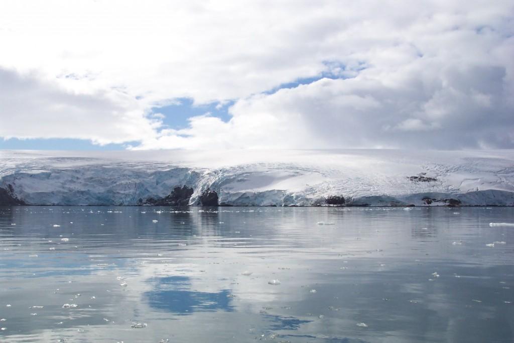 Créditos: El área de Caleta Potter, en la Antártida, de donde se aisló la bacteria Bizionia argentinensis. Créditos: Doctor Walter Mac Cormack, Instituto Antártico Argentino.