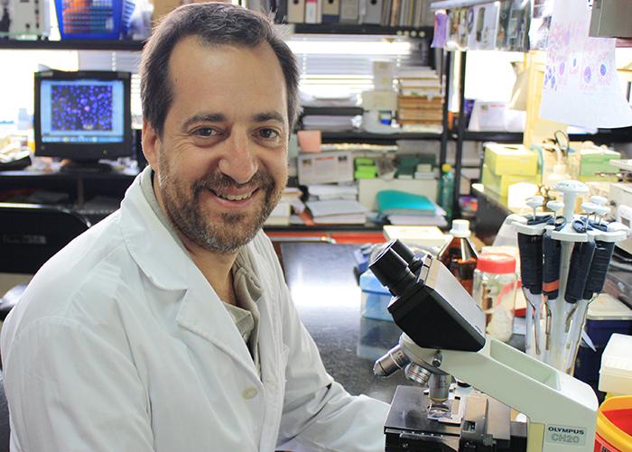 El doctor Fernando Pitossi, jefe del Laboratorio de Terapias Regenerativas y Protectoras del Sistema Nervioso del Instituto Leloir e investigador del CONICET.