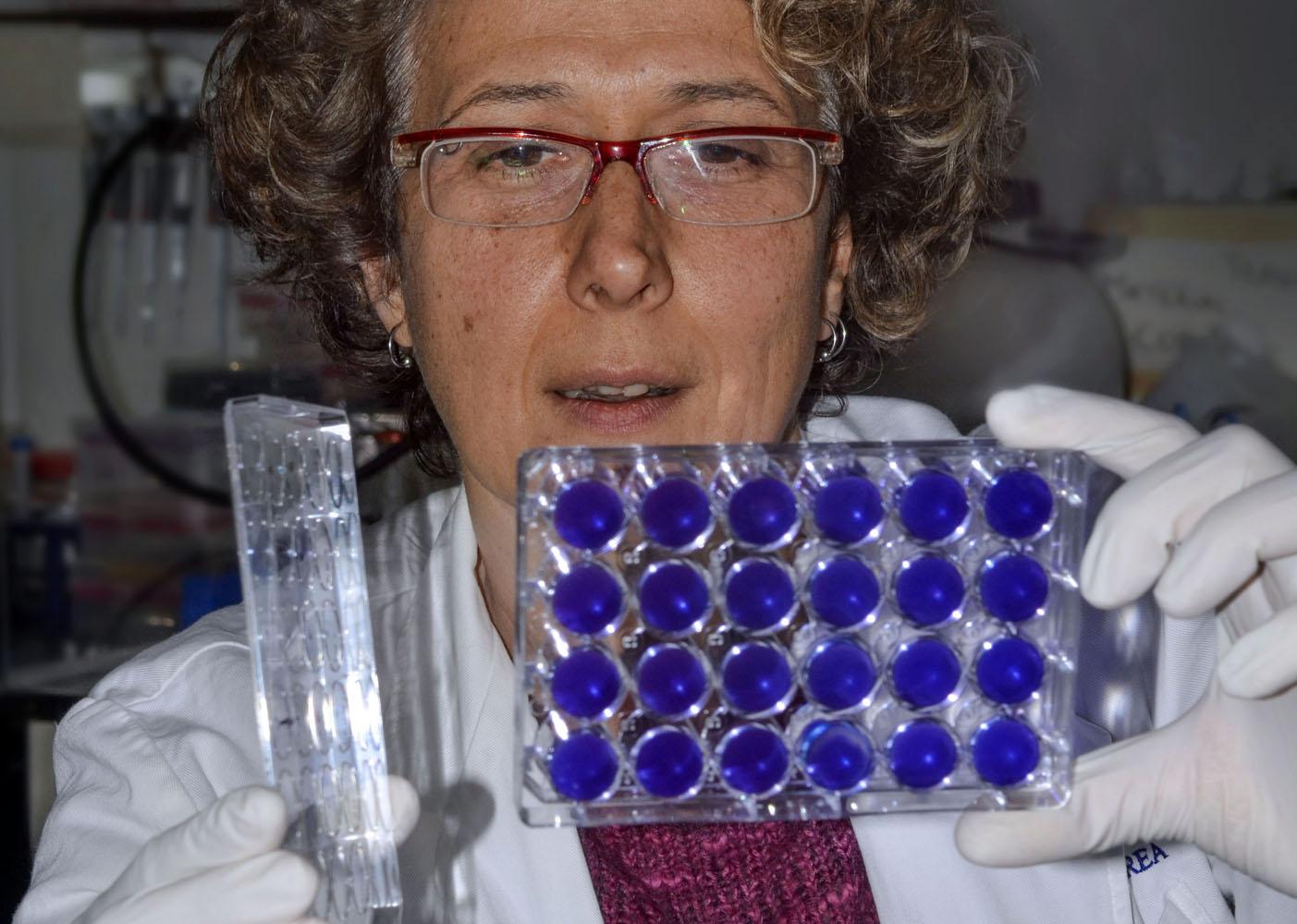 Dra. Andrea Gamanik