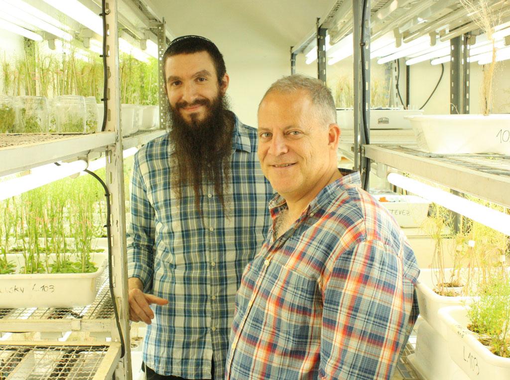 El doctor Marcelo Yanovsky, jefe del laboratorio de Genómica Vegetal del Instituto Leloir (der.) y uno de los integrantes de su grupo, el doctor Rubén Gustavo Schlaen, primer autor del estudio.