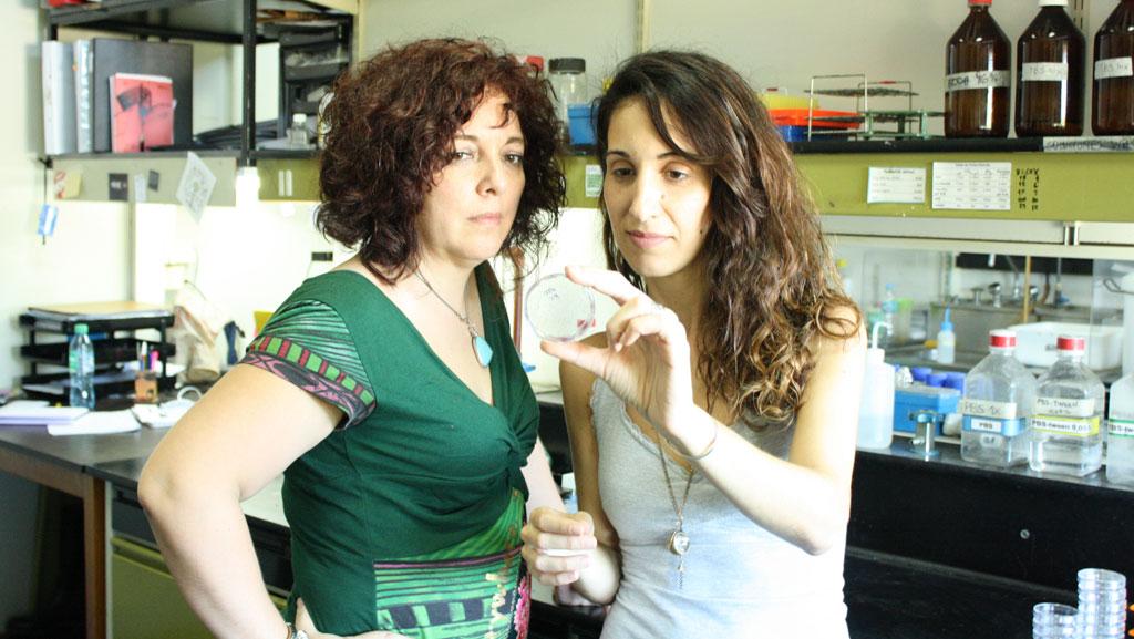 La doctora Vanesa Gottifredi, jefa del laboratorio de Ciclo Celular y Estabilidad Genómica del Instituto Leloir, y la doctora María Belén Federico, integrante de su grupo y primera autora del estudio.