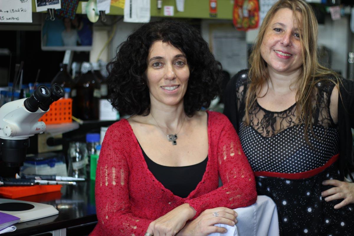 La doctora Fernanda Ceriani (izq.), jefa del Laboratorio de Genética del Comportamiento del Instituto de Investigaciones Bioquímicas de Buenos Aires, que depende del CONICET y del Instituto Leloir, y la primera autora del trabajo, la doctora Lia Frenkel.