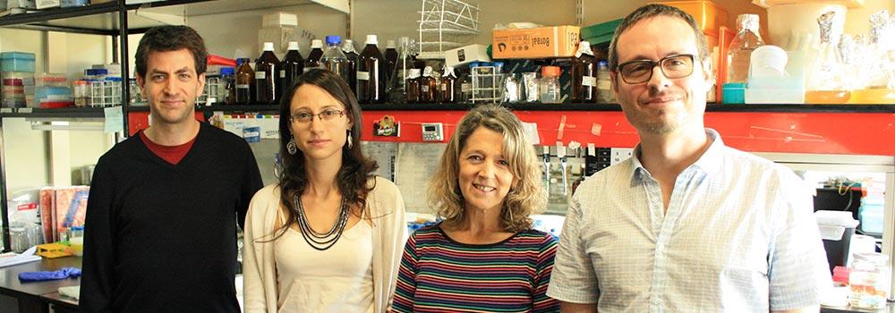 Los autores del avance (de derecha a izquierda), los doctores Rodrigo Sieira (autor principal del estudio), la doctora Ángeles Zorreguieta, jefa del Laboratorio de Microbiología Molecular y Celular del Instituto Leloir, Gabriela Sycz y Hernán Bonomi.
