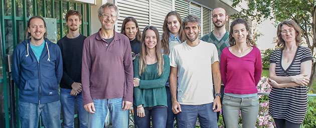 Alejandro Schinder, jefe del Laboratorio de Plasticidad Neuronal del Instituto Leloir, con la autora principal del estudio, Mariela Trinchero (centro), Silvio Temprana, quien también firmó el trabajo, y otros integrantes del grupo.