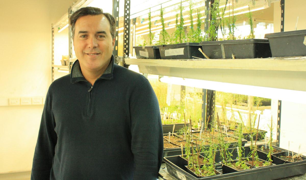 El doctor José Estévez es jefe del Laboratorio Bases Moleculares del Desarrollo Vegetal de la Fundación Instituto Leloir e investigador independiente del CONICET.