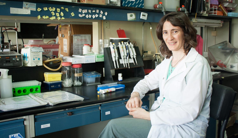 La doctora Verónica Piatti, investigadora del CONICET en el Laboratorio de Plasticidad Neuronal de la Fundación Instituto Leloir.