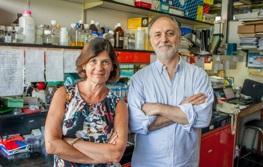 Los doctores Eduardo Castaño y Laura Morelli, investigadores de la Fundación Instituto Leloir.
