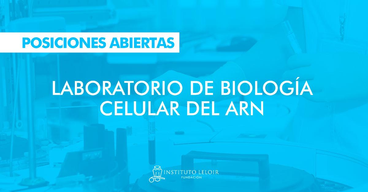 Posiciones abiertas en el Laboratorio de Biologia Celular del ARN