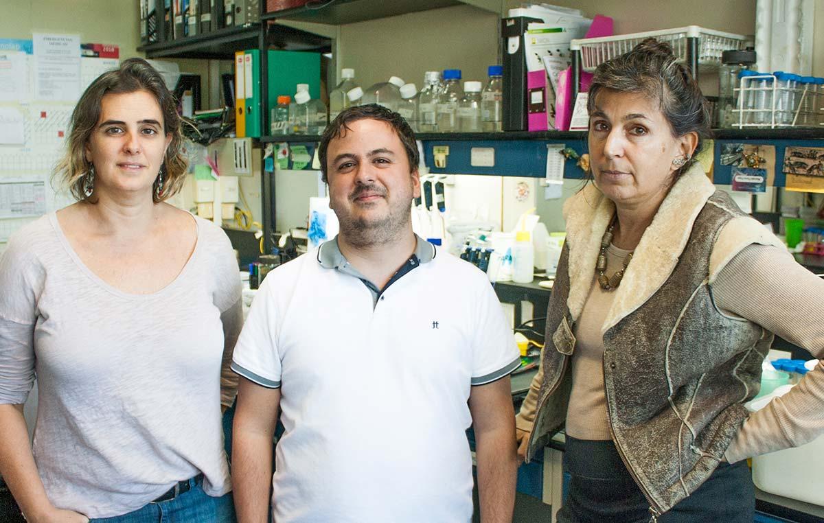 La doctora Graciela L. Boccaccio, jefa del Laboratorio de Biología Celular del ARN de la Fundación Instituto Leloir, y dos integrantes de su grupo, el doctor Marcelo Perez-Pepe y Ana J. Fernández-Alvarez.