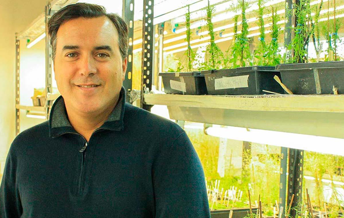 El doctor José Manuel Estévez,jefe del Laboratorio Bases Moleculares del Desarrollo Vegetal de la Fundación Instituto Leloir.