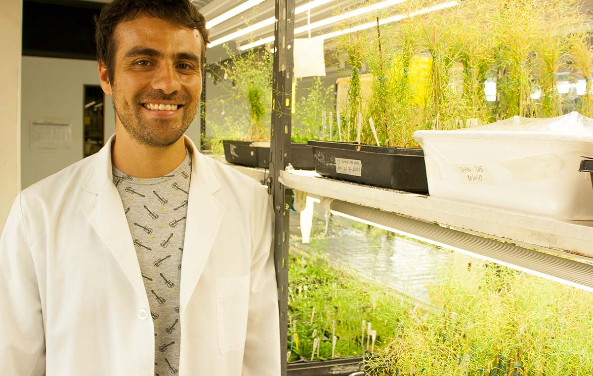 El doctor Germán Murcia realiza su posdoctorado en el laboratorio de Fisiología Molecular de Plantas liderado por el doctor Jorge Casal en la Fundación Instituto Leloir.