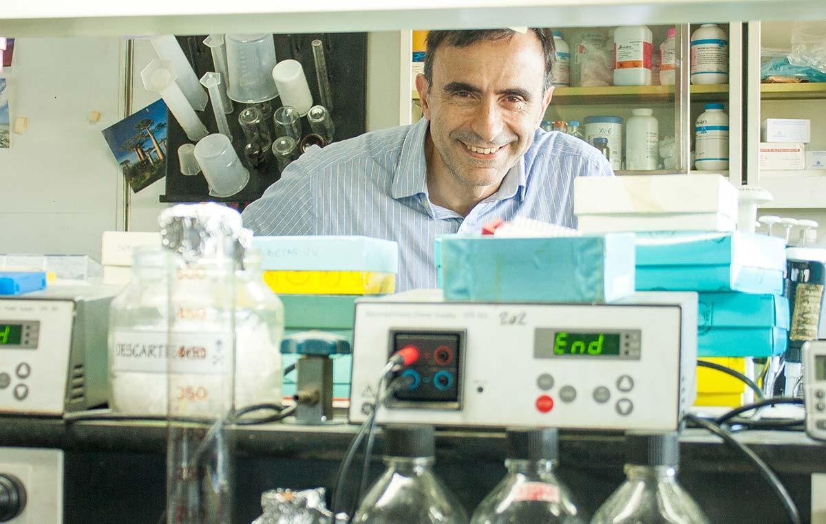 El Dr. Jorge Casal es jefe del Laboratorio de Fisiología Molecular de Plantas de la Fundación Instituto Leloir.