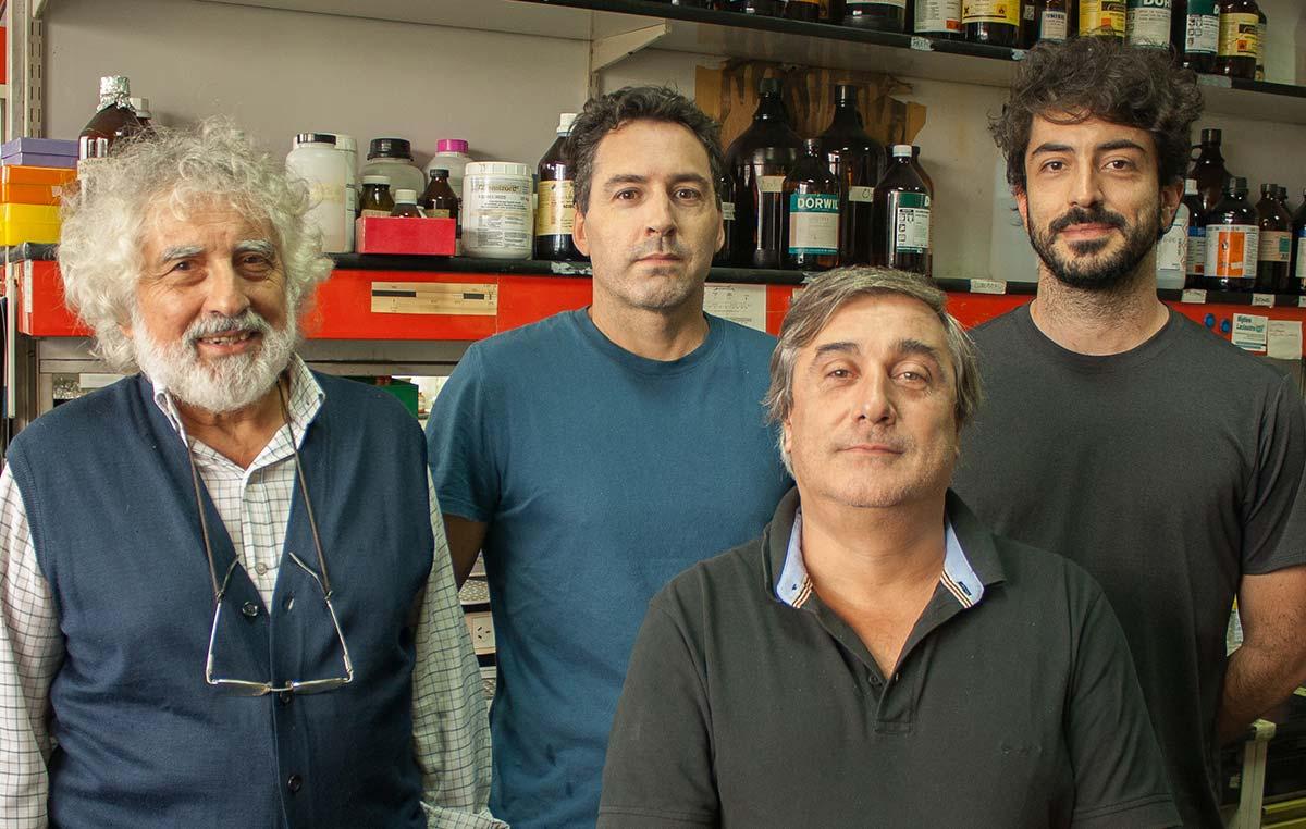 El doctor Luis Alberto Quesada Allué (izq.), jefe del Laboratorio Bioquímica y Biología Molecular del Desarrollo del Instituto Leloir, e integrantes de su grupo, los doctores Martín Pérez (primer autor del estudio), Alejandro Rabossi y Pablo Bochicchio.