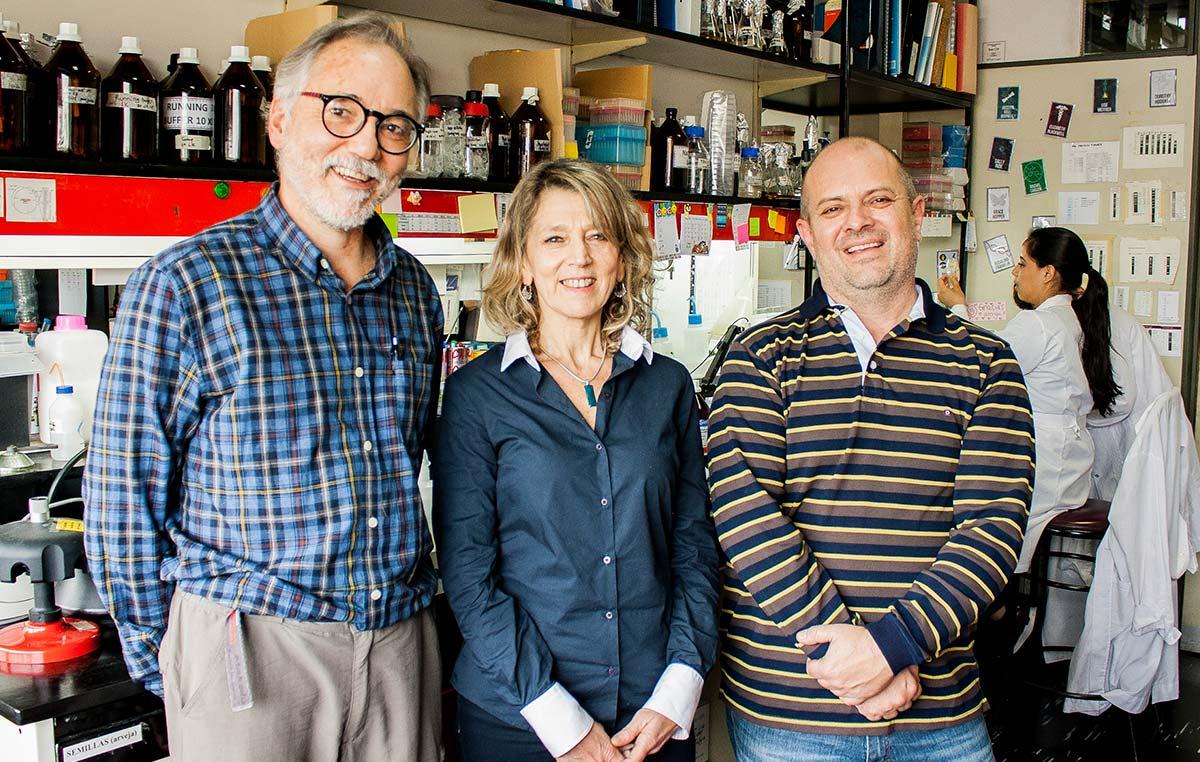 Los doctores Luis Wall (izq.), Angeles Zorreguieta y Walter Draghi.