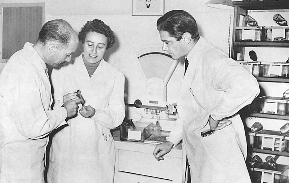 La doctora Dosne Pasqualini fue directora del Instituto de Investigaciones Hematológicas de la Academia Nacional de Medicina (1981-83) y se convirtió en la primera mujer en ser discípula del primer Premio Nobel argentino en ciencias, el doctor Bernardo Houssay, e integrar la Academia Nacional de Medicina.