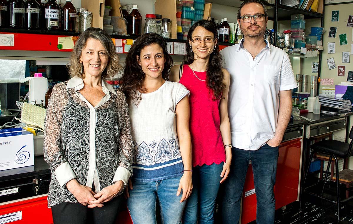 La doctora Angeles Zorreguieta (izq.), directora del estudio, Magalí Bialer, primera autora del trabajo, Gabriela Sycz y Rodrigo Sieira, investigadores del CONICET en el Instituto Leloir.