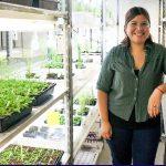 """""""Identificamos el primer receptor de temperatura de las plantas"""""""
