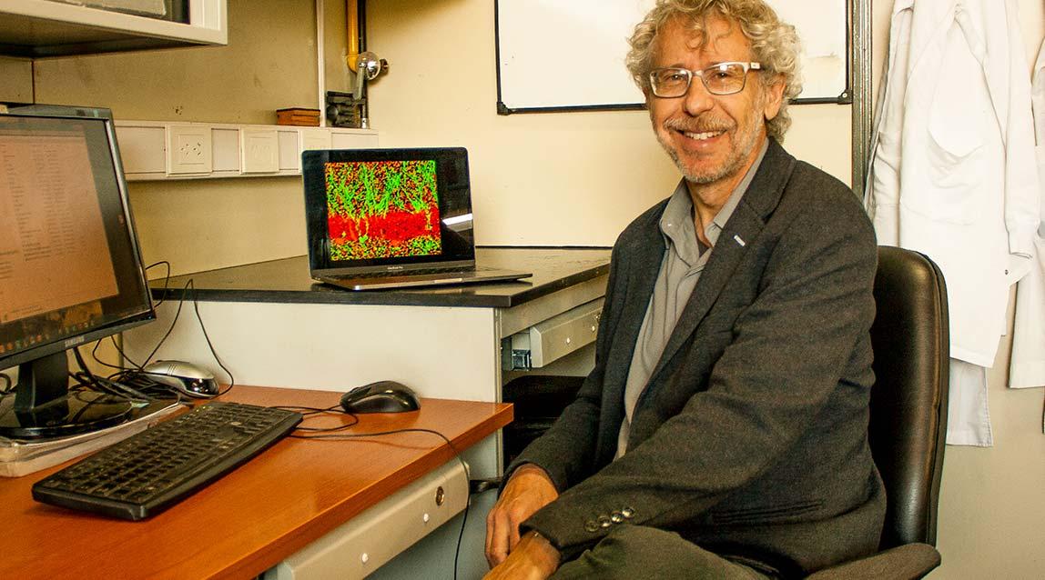 Alejandro Schinder, director del Laboratorio de Plasticidad Neuronal y Presidente de la Fundación Instituto Leloir