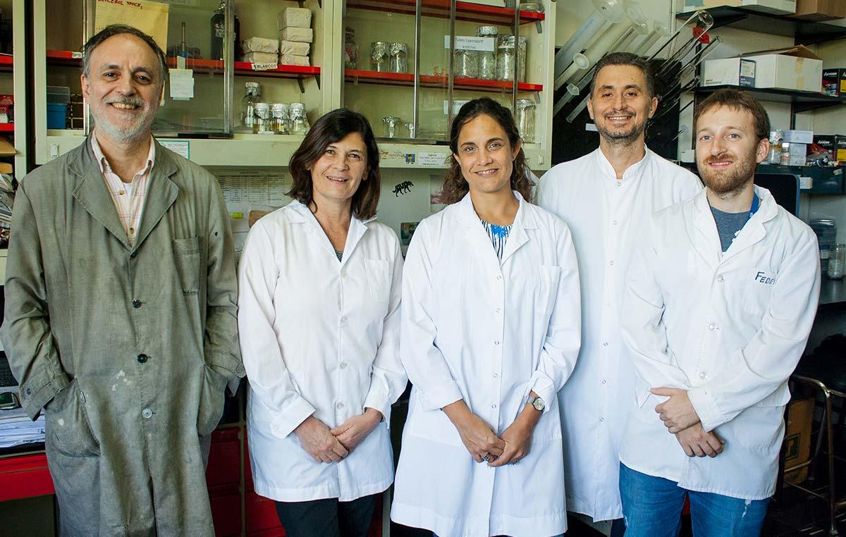 Eduardo Castaño (izq.), Laura Morelli, María Carolina Dalmasso, Pablo Galeano y Federico Prestía, investigadores del Instituto Leloir.