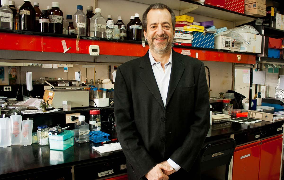 El doctor Fernando Pitossi, director del Laboratorio de Terapias Regenerativas y Protectoras del Sistema Nervioso del Instituto Leloir.