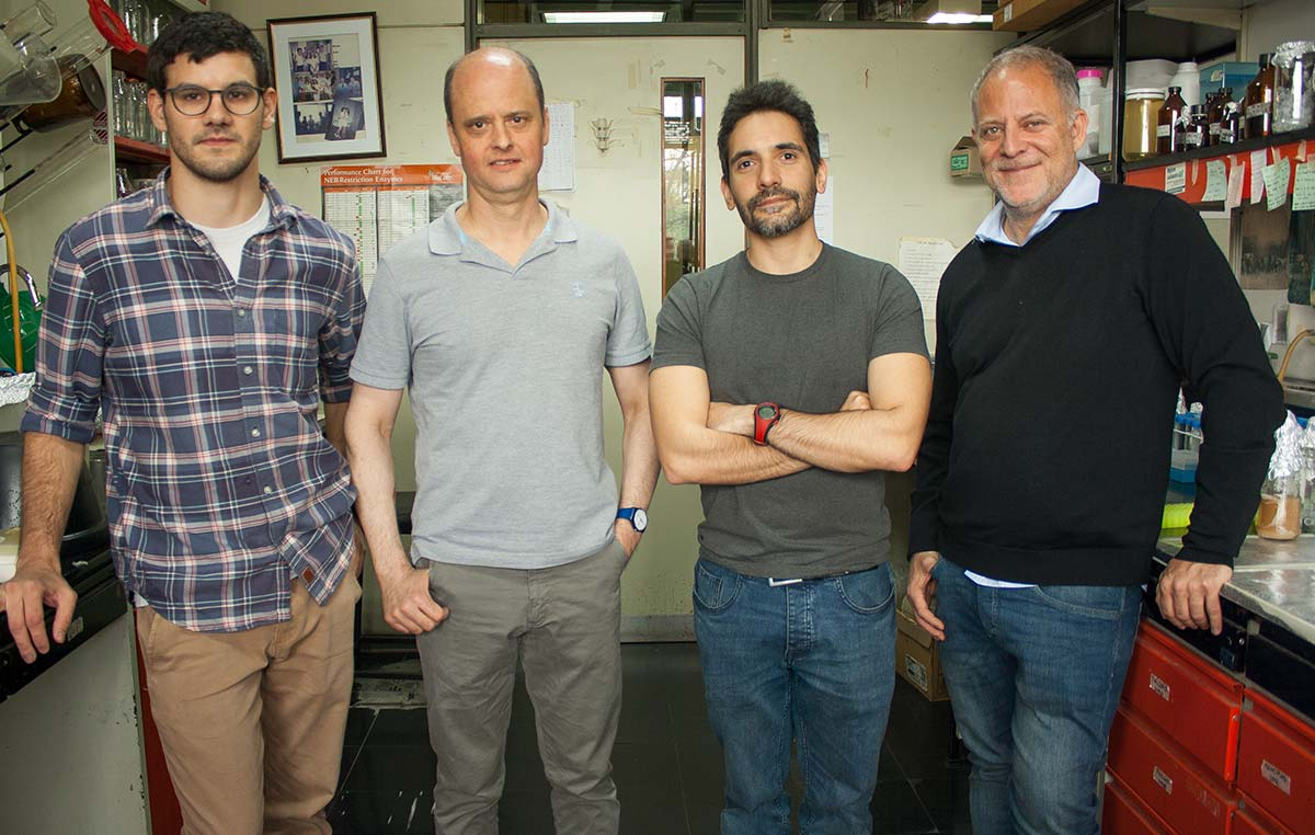 Pedro García Gagliardi (Izq.), Pablo Cerdán, Christian Lorenzo y Marcelo Yanovsky, biólogos del Instituto Leloir.