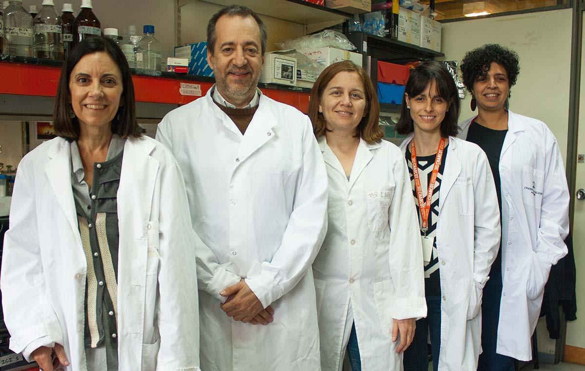 Los autores del avance: Carina Ferrari (izq.), Fernando Pitossi, María Celeste Leal, Berenice Silva, y María Isabel Farías.