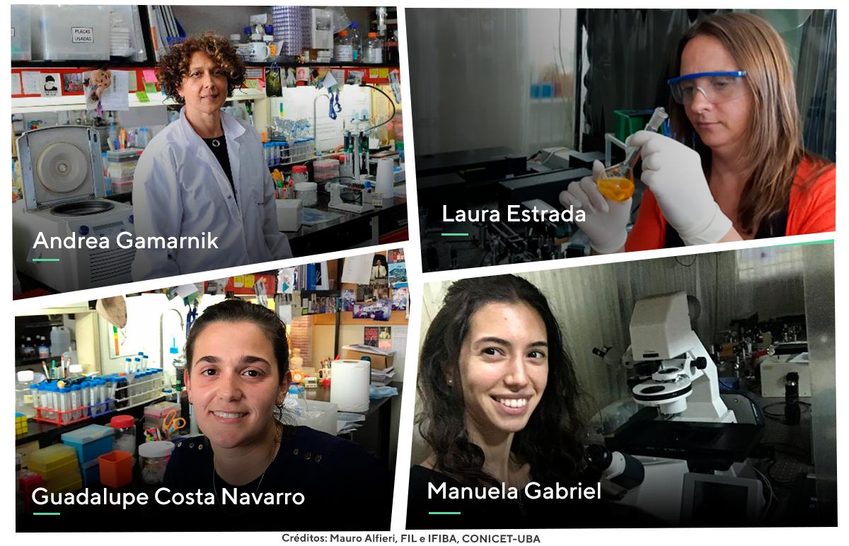 El logro científico fue posible gracias a un trabajo interdisciplinario realizado por las virólogas moleculares Andrea Gamarnik y Guadalupe Costa Navarro, y las físicas Laura Estrada y Manuela Gabriel.