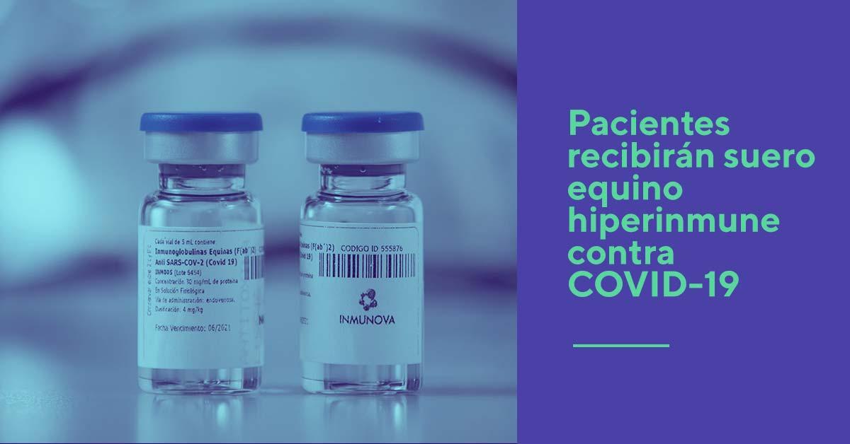 Pacientes recibirán suero equino hiperinmune contra COVID-19   Fundación  Instituto Leloir