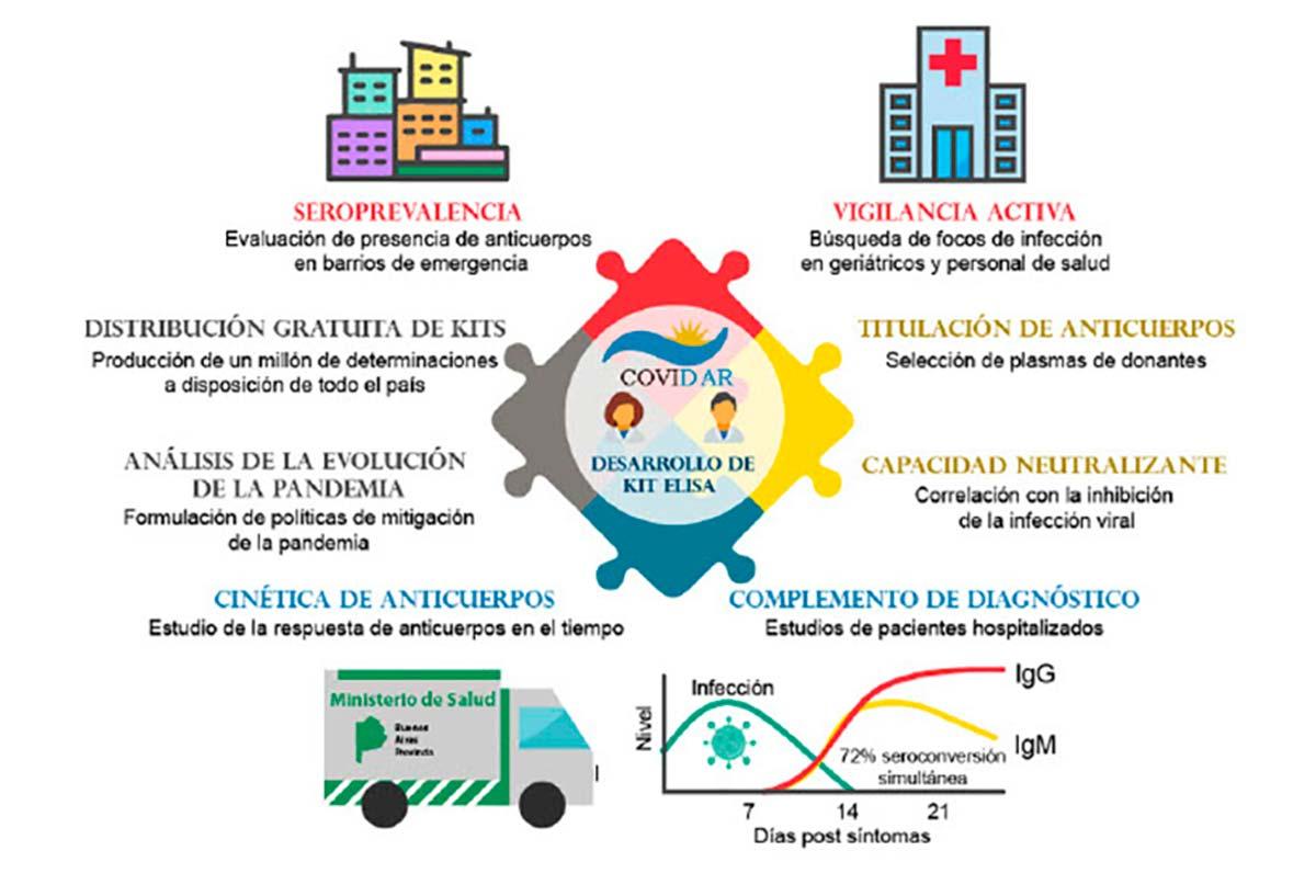 Los kits COVIDAR IgG e IgM se usan para evaluar los niveles de anticuerpos en la respuesta del sistema inmune al nuevo coronavirus, para el control de su transmisión en barrios, el cuidado del personal de salud,vigilancia en personal de geriátricos, estudios clínicos, selección de donantes de plasma para terapias y otras aplicaciones.